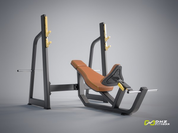 EVOST I - Olympic Bench Incline-